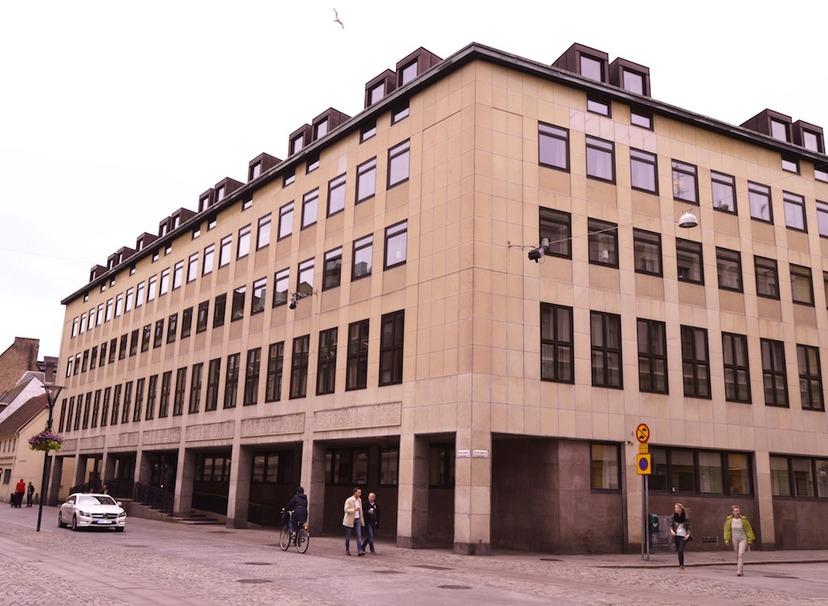 2018 kvinna mörk hud nära Malmö
